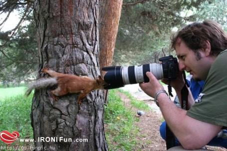 IRONI Fun.com ::. عکس های خنده دار (سری 2)
